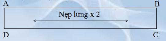 rap-vay-lung